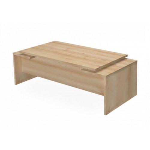 EX-IG-220/100 vezető asztal